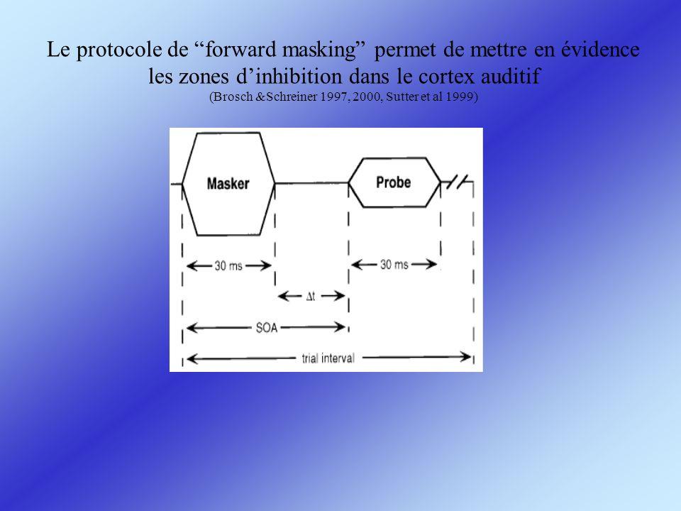 Le protocole de forward masking permet de mettre en évidence les zones dinhibition dans le cortex auditif (Brosch &Schreiner 1997, 2000, Sutter et al