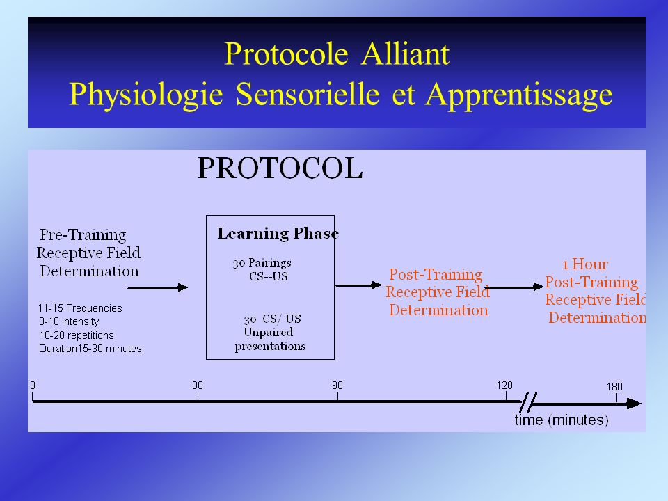 Protocole Alliant Physiologie Sensorielle et Apprentissage
