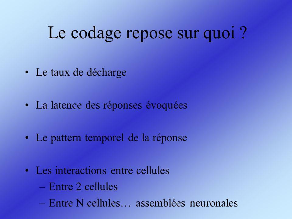 Le codage repose sur quoi ? Le taux de décharge La latence des réponses évoquées Le pattern temporel de la réponse Les interactions entre cellules –En