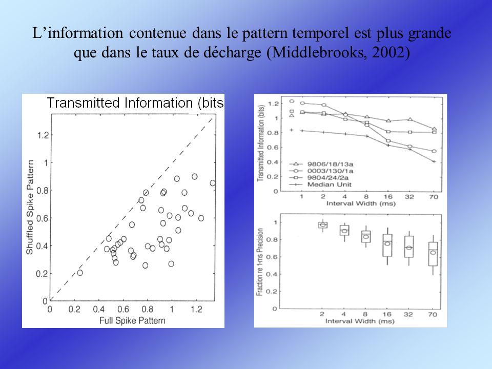Linformation contenue dans le pattern temporel est plus grande que dans le taux de décharge (Middlebrooks, 2002)