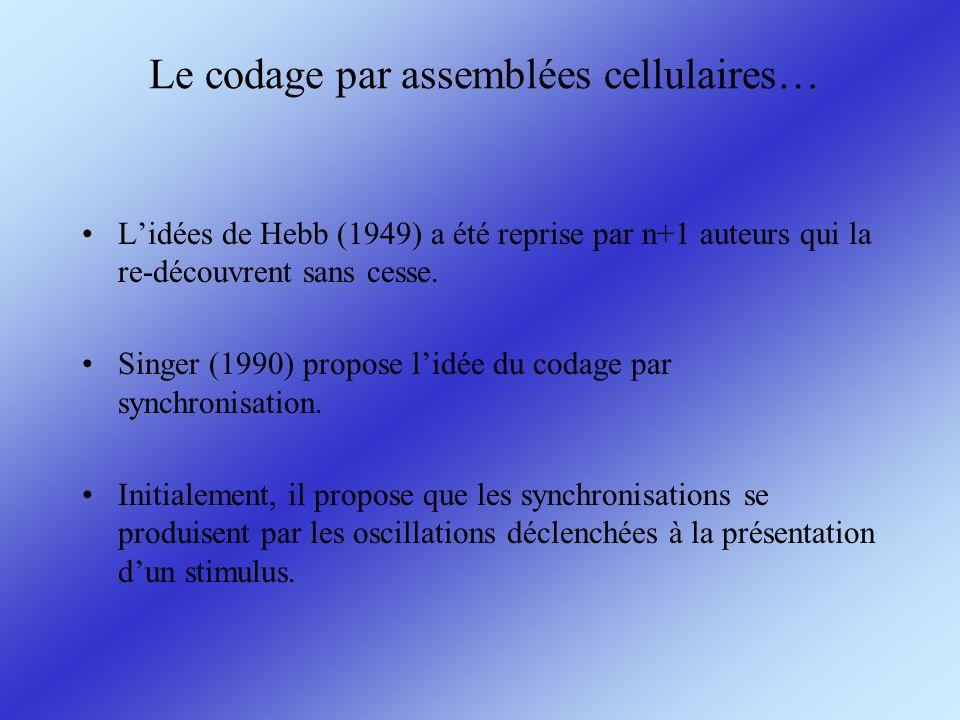 Le codage par assemblées cellulaires… Lidées de Hebb (1949) a été reprise par n+1 auteurs qui la re-découvrent sans cesse. Singer (1990) propose lidée