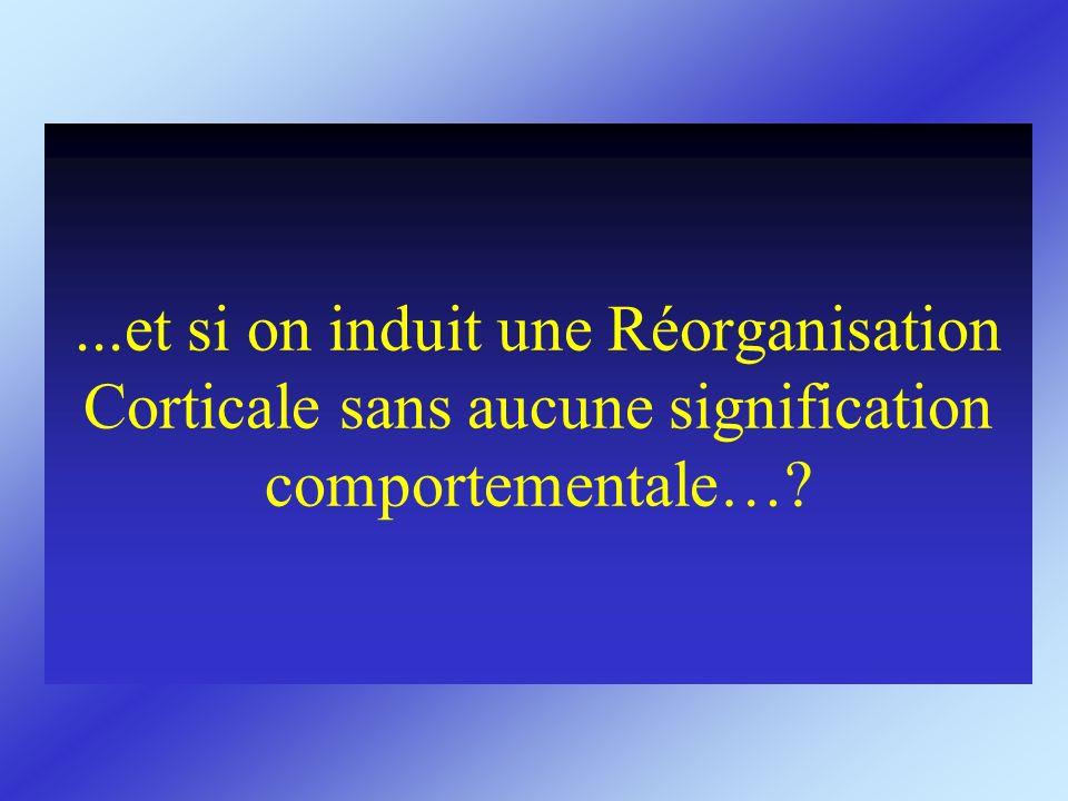 ...et si on induit une Réorganisation Corticale sans aucune signification comportementale…?