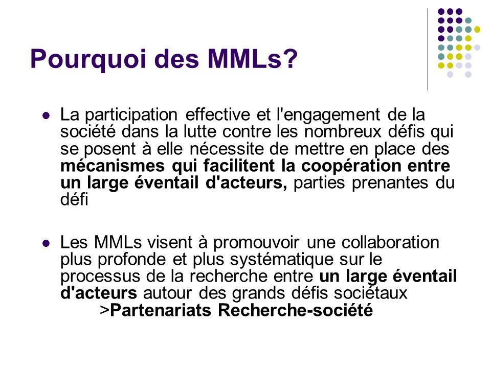 Pourquoi des MMLs? La participation effective et l'engagement de la société dans la lutte contre les nombreux défis qui se posent à elle nécessite de