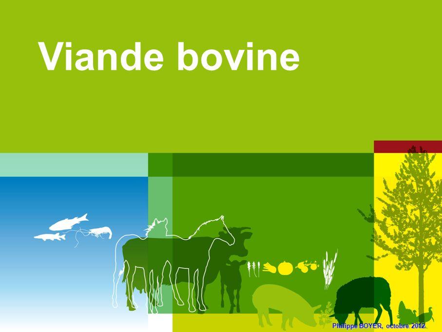 Philippe BOYER, octobre 2012 Viande bovine