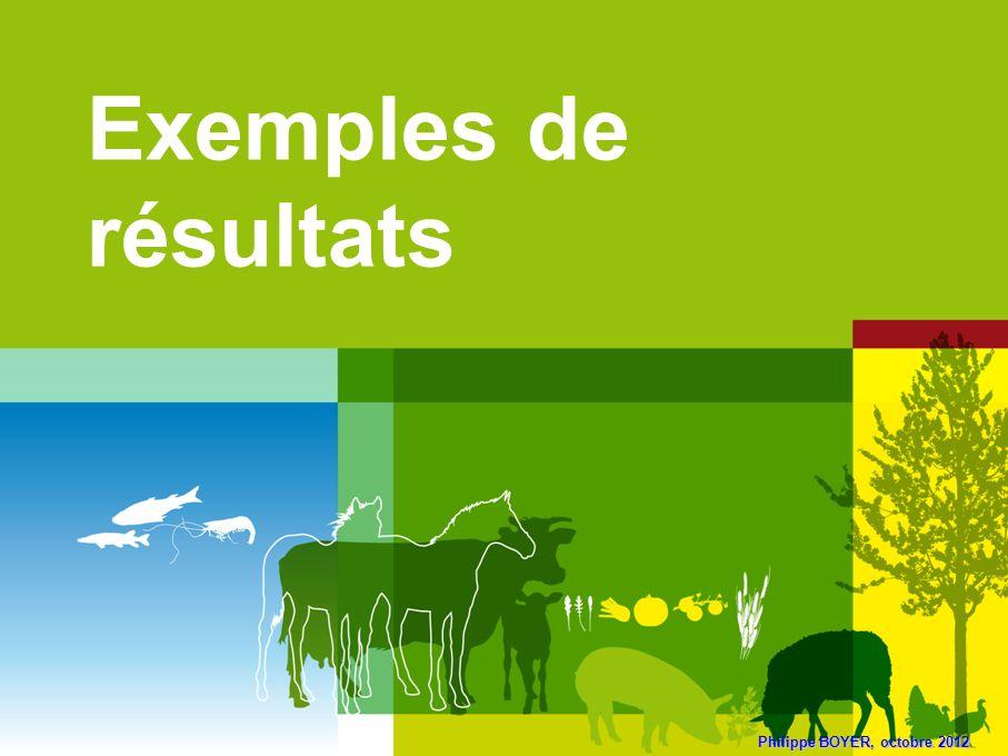 Philippe BOYER, octobre 2012 Exemples de résultats