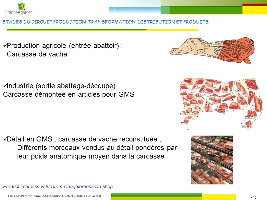 18 STADES DU CIRCUIT PRODUCTION-TRANSFORMATION-DISTRIBUTION ET PRODUITS Production agricole (entrée abattoir) : Carcasse de vache Product : carcass value from slaughterhouse to shop Industrie (sortie abattage-découpe) Carcasse démontée en articles pour GMS Détail en GMS : carcasse de vache reconstituée : Différents morceaux vendus au détail pondérés par leur poids anatomique moyen dans la carcasse