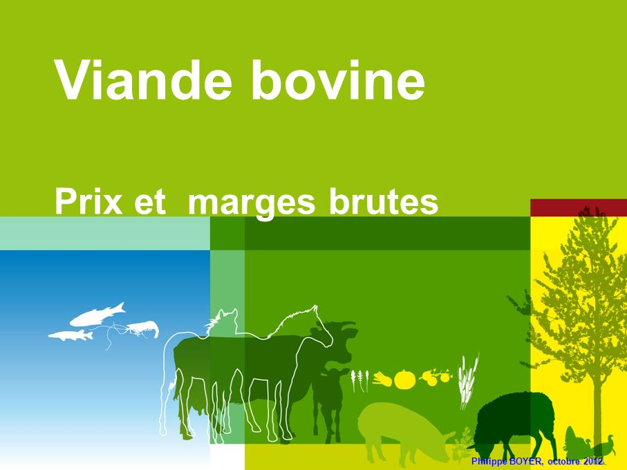 Philippe BOYER, octobre 2012 Viande bovine Prix et marges brutes