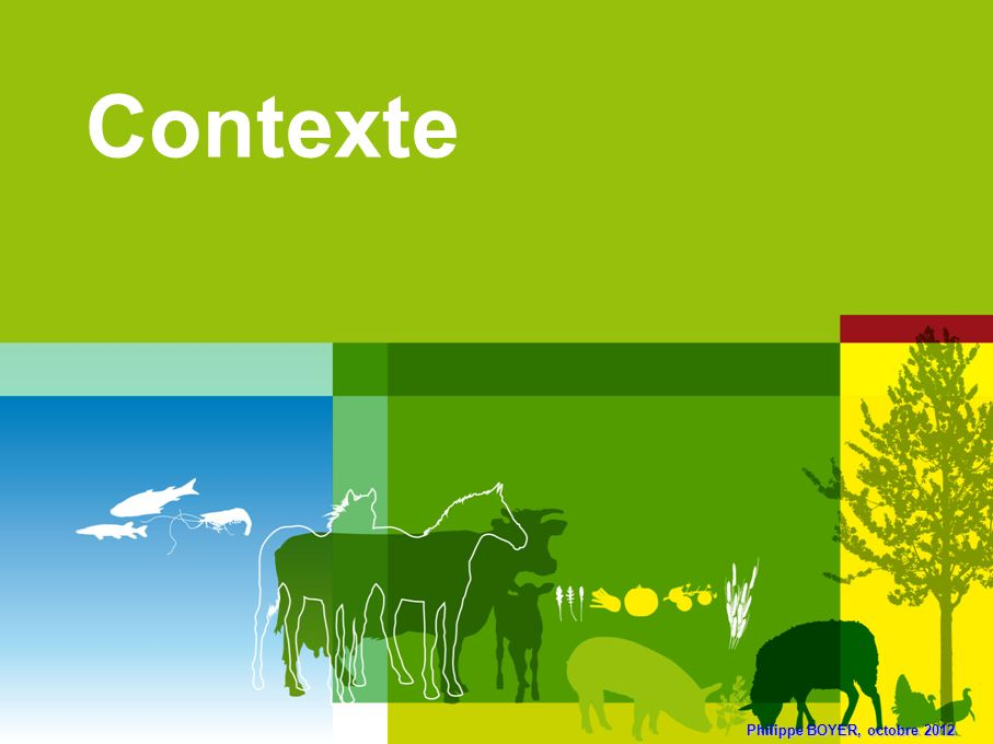 44 Viande bovine : transmission / poids de laliment concentré Source : FranceAgriMer, SSP