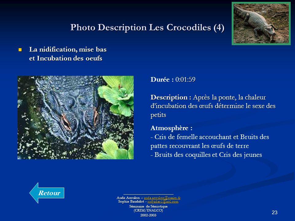 23 Photo Description Les Crocodiles (4) ________________________ Aude Acoulon – aude.acoulon@nerim.fr Sophie Baudelot - sofyades1@aol.com aude.acoulon