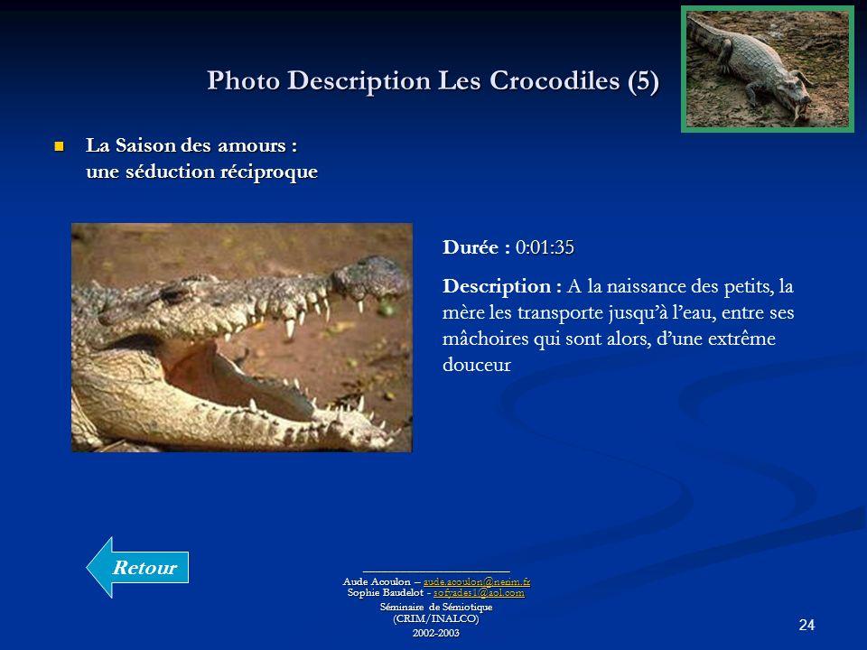 24 Photo Description Les Crocodiles (5) ________________________ Aude Acoulon – aude.acoulon@nerim.fr Sophie Baudelot - sofyades1@aol.com aude.acoulon