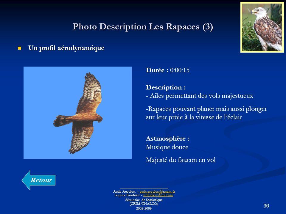 36 Photo Description Les Rapaces (3) ________________________ Aude Acoulon – aude.acoulon@nerim.fr Sophie Baudelot - sofyades1@aol.com aude.acoulon@ne