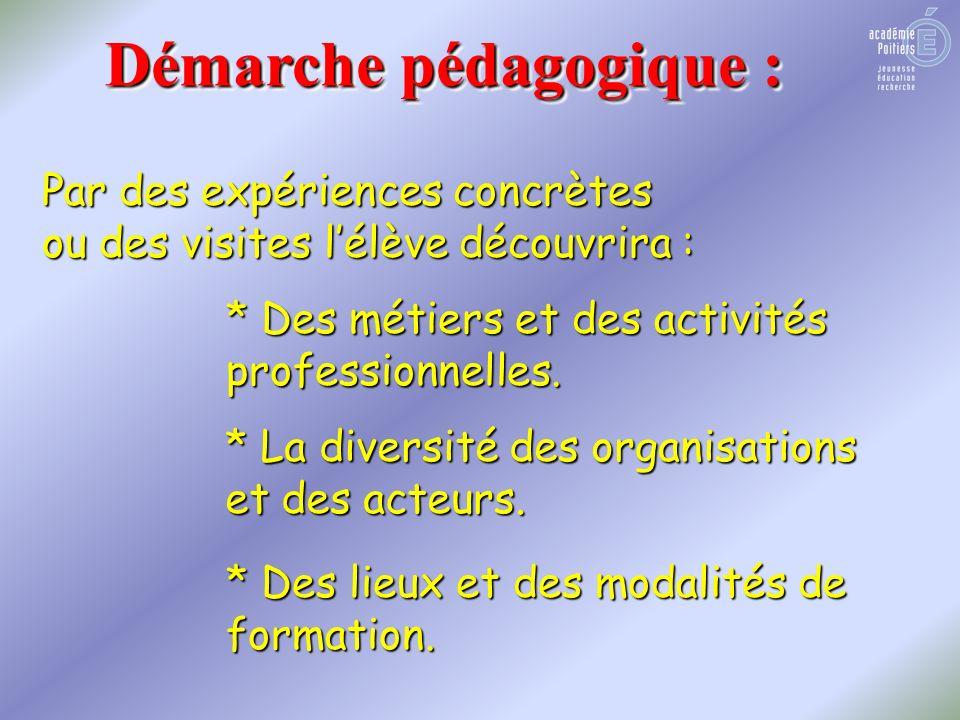 Démarche pédagogique : Par des expériences concrètes ou des visites lélève découvrira : * Des métiers et des activités professionnelles.