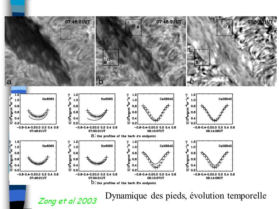 Zong et al 2003 Dynamique des pieds, évolution temporelle