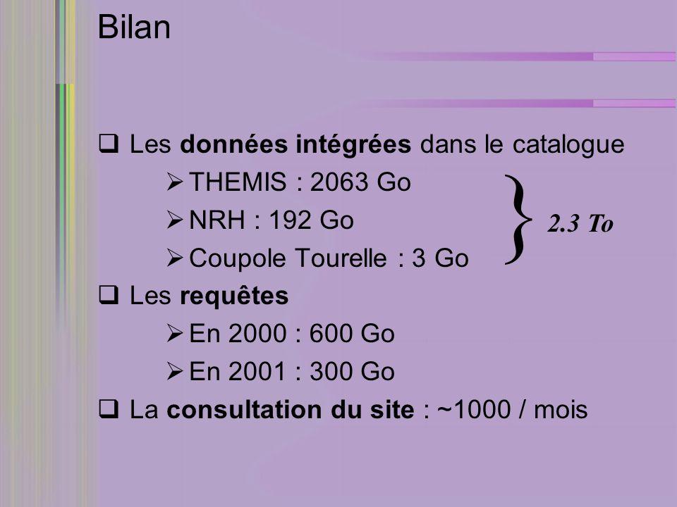Bilan Les données intégrées dans le catalogue THEMIS : 2063 Go NRH : 192 Go Coupole Tourelle : 3 Go Les requêtes En 2000 : 600 Go En 2001 : 300 Go La consultation du site : ~1000 / mois 2.3 To }