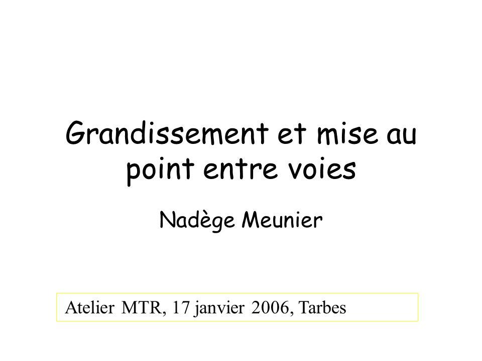 Grandissement et mise au point entre voies Nadège Meunier Atelier MTR, 17 janvier 2006, Tarbes