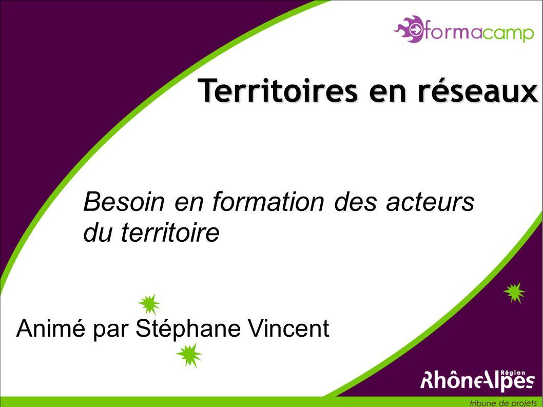 Besoin en formation des acteurs du territoire Territoires en réseaux Animé par Stéphane Vincent