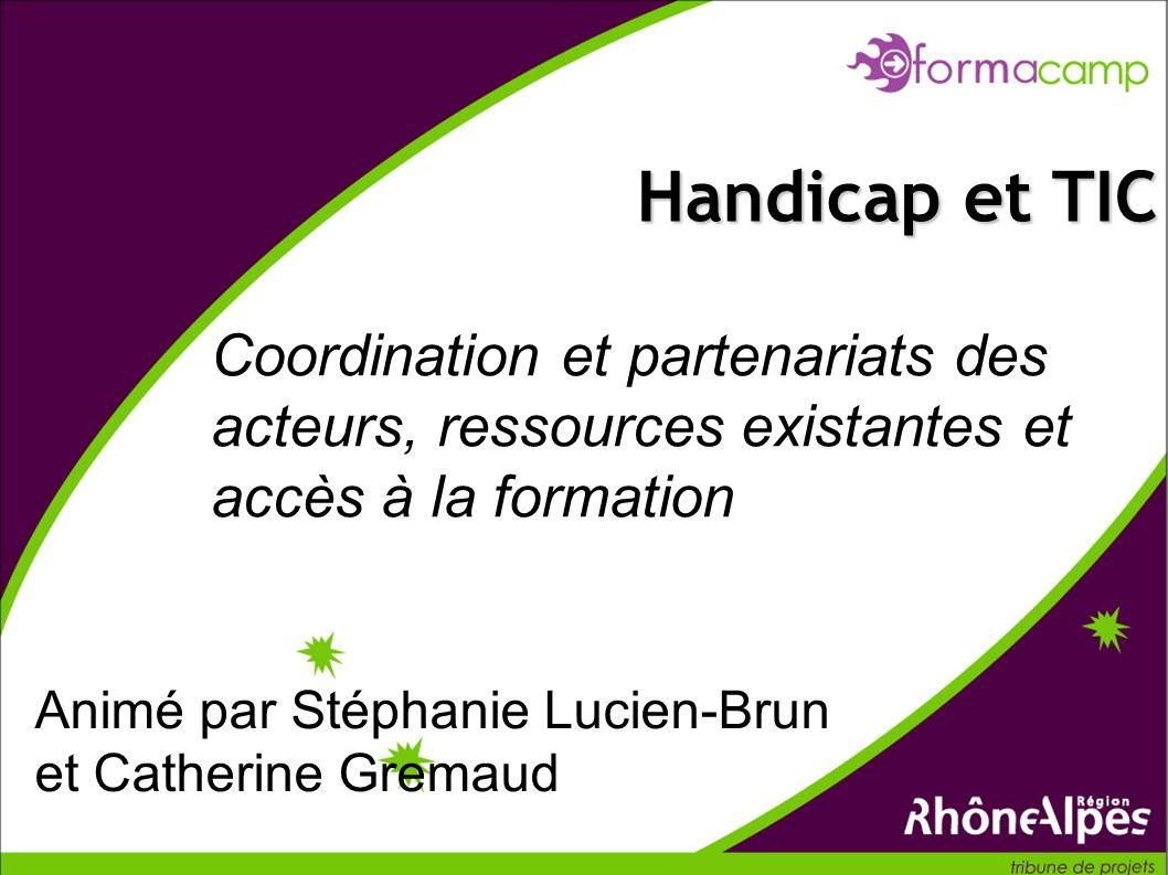 Coordination et partenariats des acteurs, ressources existantes et accès à la formation Handicap et TIC Animé par Stéphanie Lucien-Brun et Catherine Gremaud