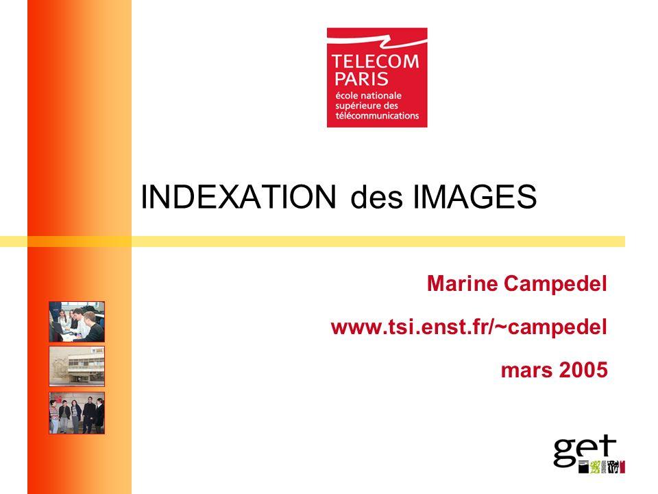 INDEXATION des IMAGES Marine Campedel www.tsi.enst.fr/~campedel mars 2005