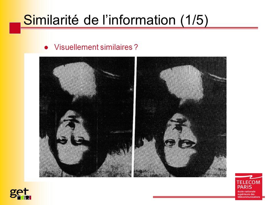 Similarité de linformation (1/5) Visuellement similaires ?