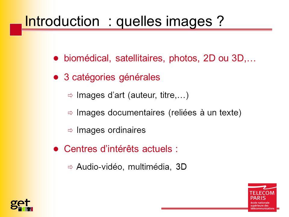 Introduction : quelles images ? biomédical, satellitaires, photos, 2D ou 3D,… 3 catégories générales Images dart (auteur, titre,…) Images documentaire