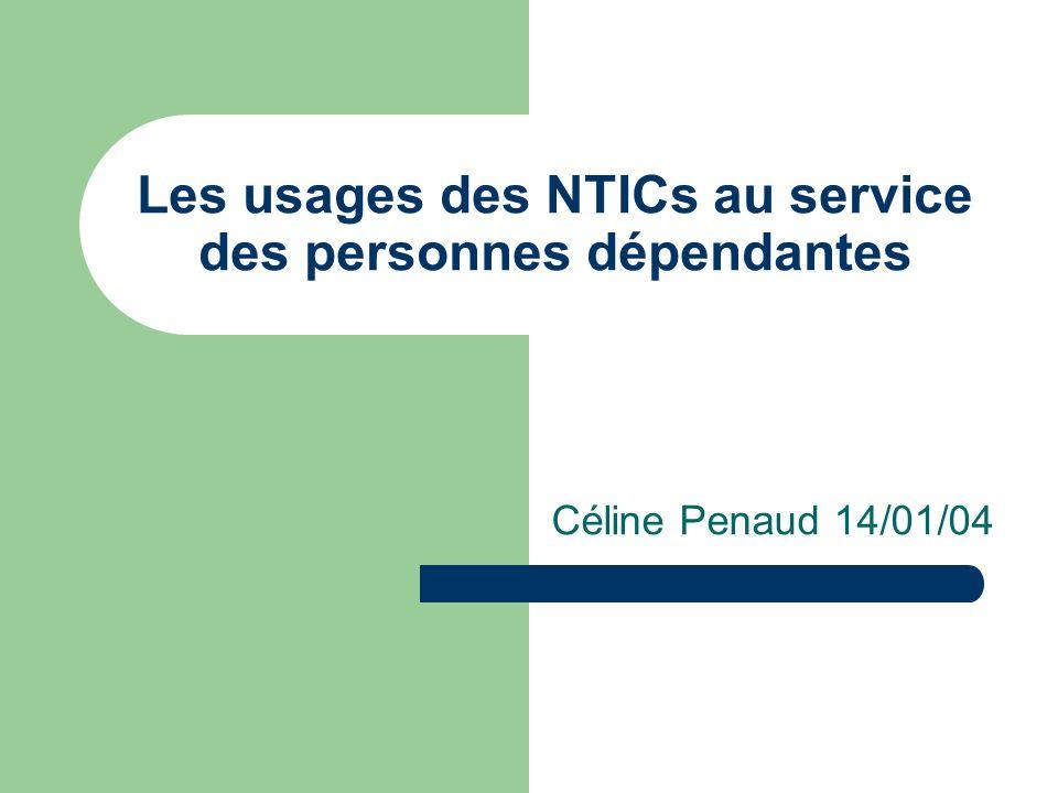 Les usages des NTICs au service des personnes dépendantes Céline Penaud 14/01/04