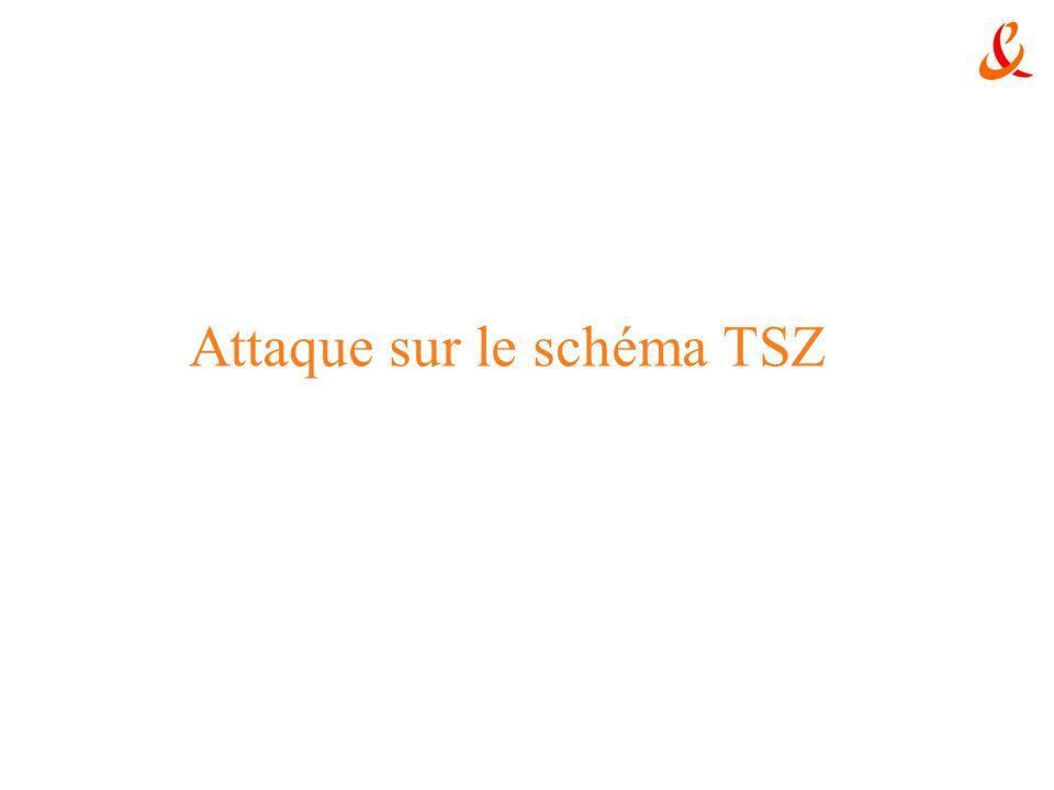 Attaque sur le schéma TSZ