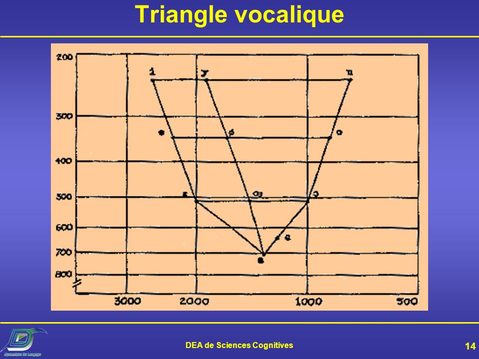 DEA de Sciences Cognitives 14 Triangle vocalique