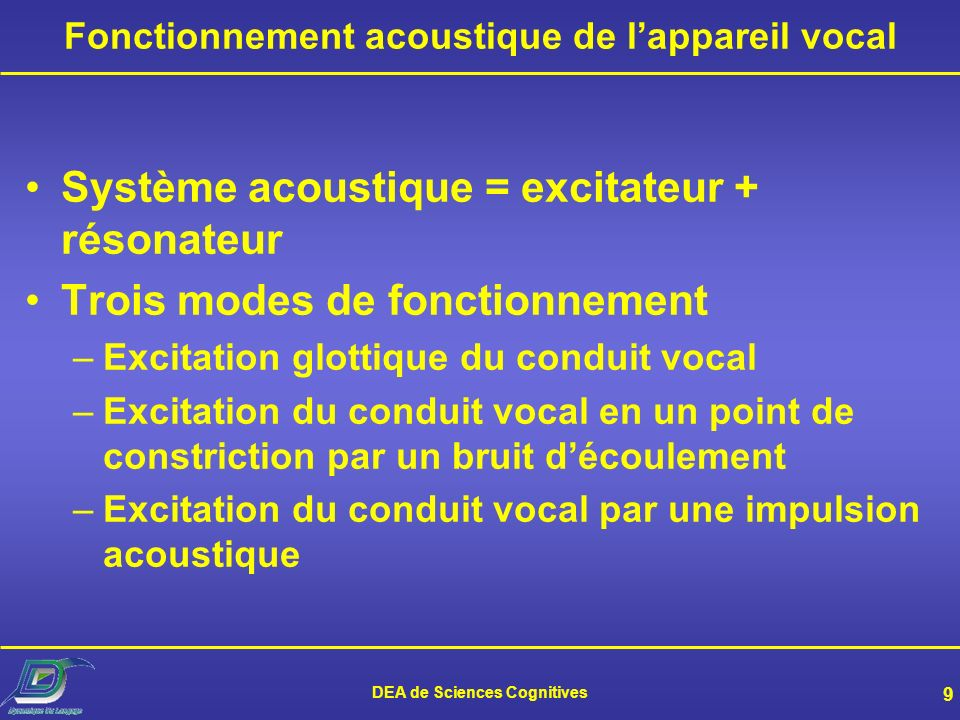 DEA de Sciences Cognitives 8 Anatomie de lappareil vocal (3)