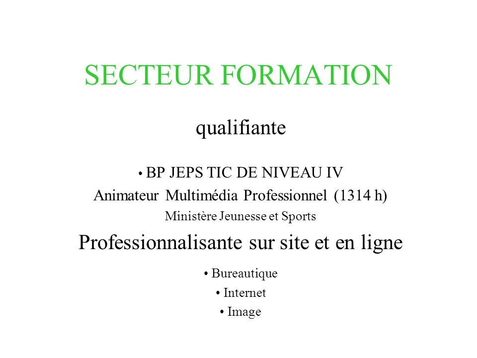 SECTEUR FORMATION qualifiante BP JEPS TIC DE NIVEAU IV Animateur Multimédia Professionnel (1314 h) Ministère Jeunesse et Sports Professionnalisante sur site et en ligne Bureautique Internet Image