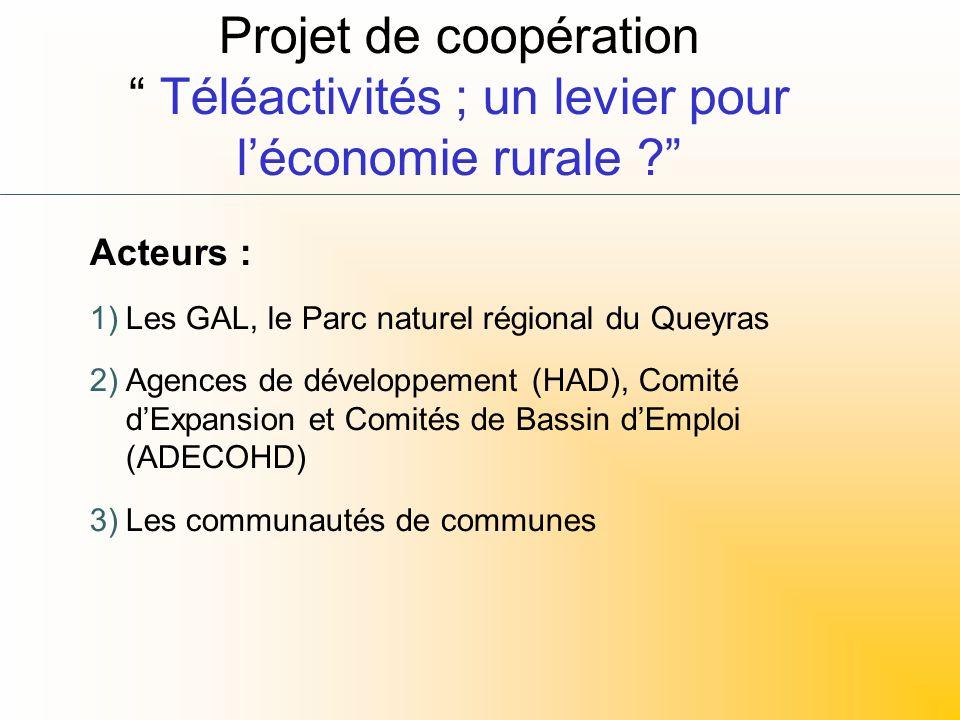 Projet de coopération Téléactivités ; un levier pour léconomie rurale ? Acteurs : 1)Les GAL, le Parc naturel régional du Queyras 2)Agences de développ