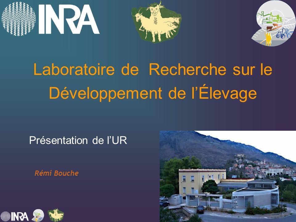 Fédération de Recherche : INRA LRDE 11 décembre 2007 Laboratoire de Recherche sur le Développement de lÉlevage Présentation de lUR Rémi Bouche