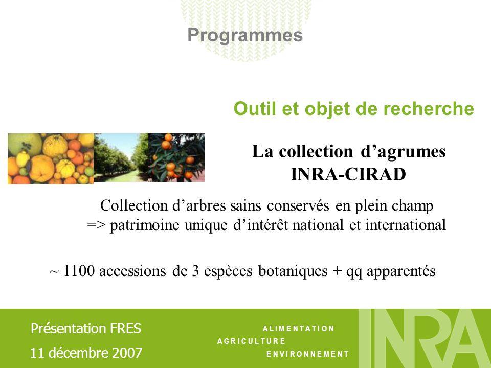 A L I M E N T A T I O N A G R I C U L T U R E E N V I R O N N E M E N T Maintien et gestion de la collection - Pérennisation des Ressources Génétiques - Gestion du matériel végétal (utilisation, diffusion…) - Gestion de la connaissance sur les RG - Amélioration des protocoles de détection de µ-organismes pathogènes (certification fruitière) - Démarche daccréditation CRB agrumes (réseau INRA GAP) - Développement dun outil informatique pour la gestion des bases de données (réseau INRA GAP, projet SIREgal) Les enjeux Les actions Présentation FRES 11 décembre 2007