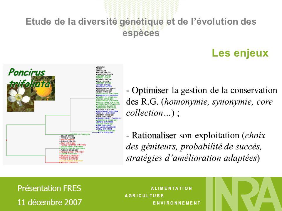 A L I M E N T A T I O N A G R I C U L T U R E E N V I R O N N E M E N T - Descripteurs phénotypiques (IPGRI, UPOV) - Développement de marqueurs de lADN Contrats: CTPS 2000-2002 « Mandariniers »; CPER; PRAD 2005; BRG 2007… Les moyens Collaborations: Laboratoires Université Corse; INRA Maroc; IAV Hassan II; CIRAD… Contrats: Génoscope 2000 ; CRB 2001-2002 ; PRAD 2003 Génoscope 2005; … Collaborations: CIRAD, PR, IVIA (Espagne), … Etude de la diversité génétique et de lévolution des espèces Présentation FRES 11 décembre 2007