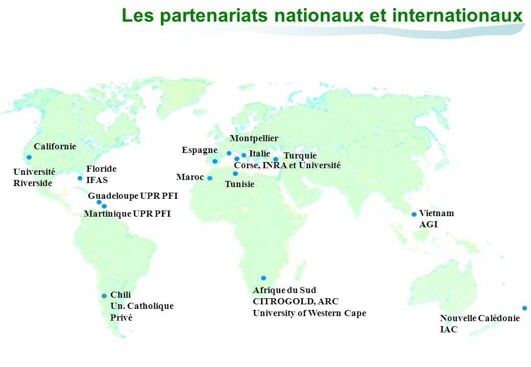 Corse, INRA et Université Montpellier Espagne Les partenariats nationaux et internationaux Guadeloupe UPR PFI Martinique UPR PFI Turquie Maroc Vietnam