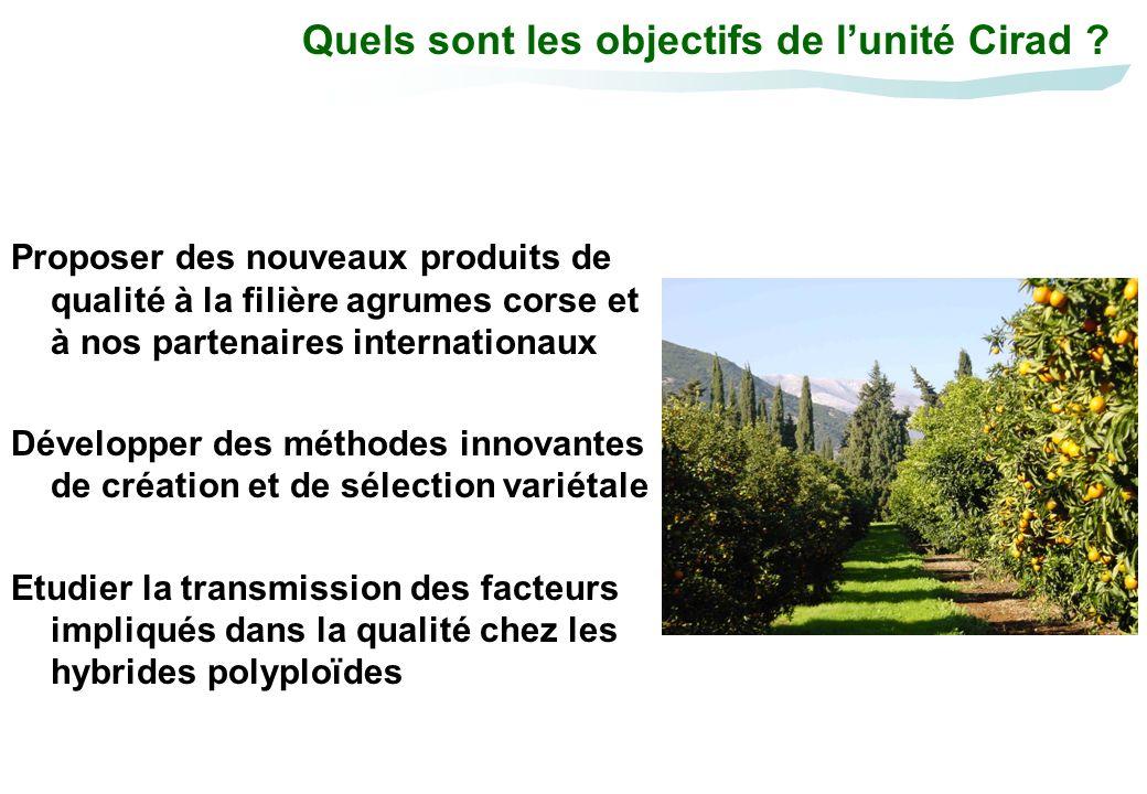 Quels sont les objectifs de lunité Cirad ? Proposer des nouveaux produits de qualité à la filière agrumes corse et à nos partenaires internationaux Dé