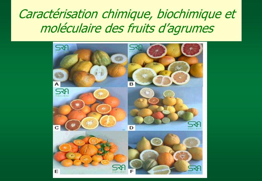 Caractérisation chimique, biochimique et moléculaire des fruits dagrumes