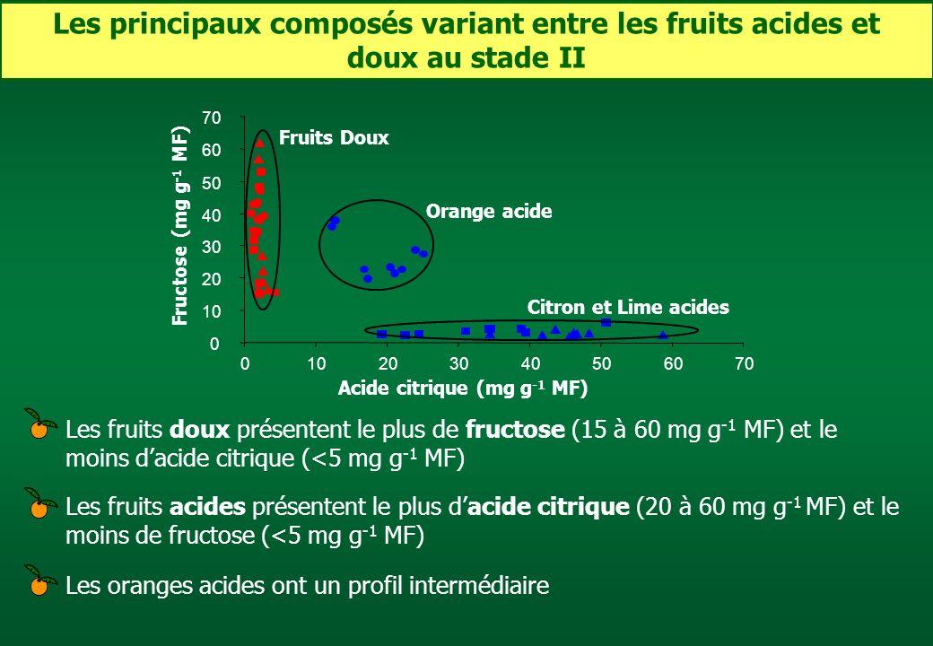 Les principaux composés variant entre les fruits acides et doux au stade II Fructose (mg g -1 MF) Acide citrique (mg g -1 MF) 0 10 20 30 40 50 60 70 0
