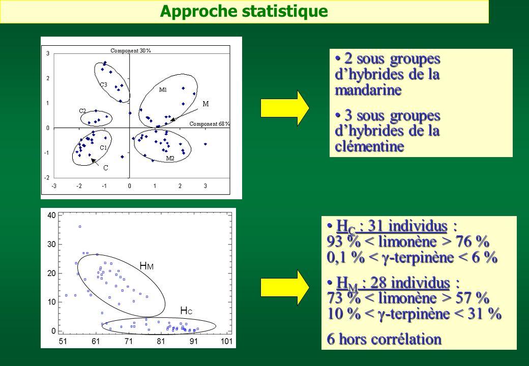 HMHM HCHC H C : 31 individus : 93 % 76 % 0,1 % 76 % 0,1 % < -terpinène < 6 % H M : 28 individus : 73 % 57 % 10 % 57 % 10 % < -terpinène < 31 % 6 hors