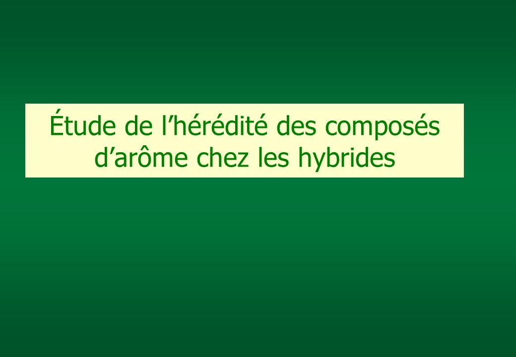 Étude de lhérédité des composés darôme chez les hybrides
