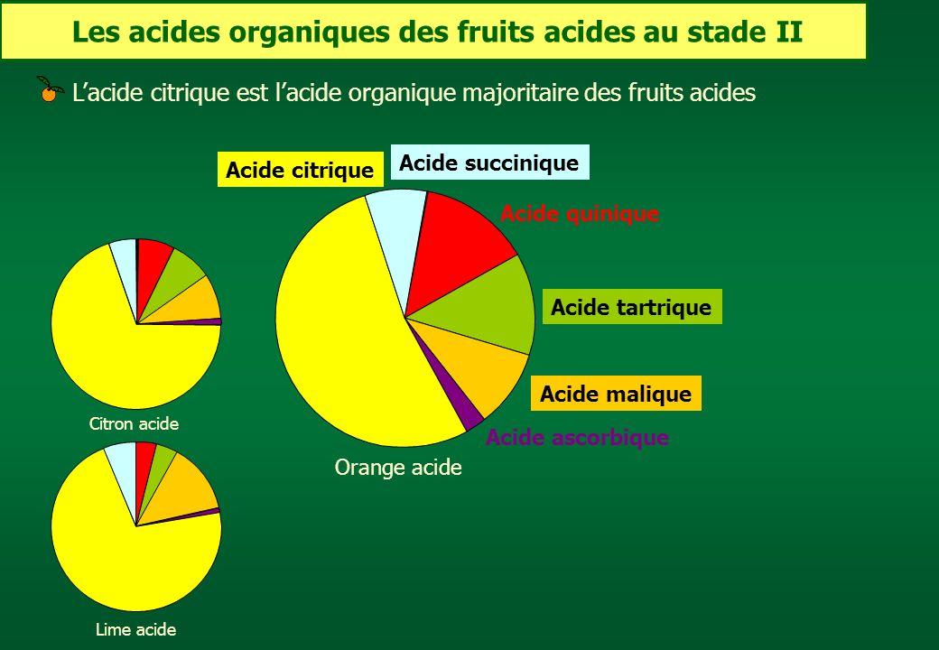 Les acides organiques des fruits acides au stade II Acide tartrique Acide quinique Acide citrique Acide ascorbique Acide malique Acide succinique Oran