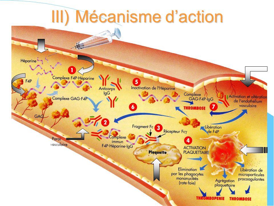III) Mécanisme daction