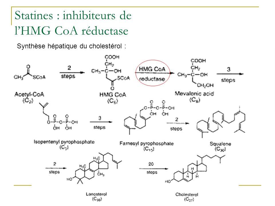 Statines : inhibiteurs de lHMG CoA réductase Synthèse hépatique du cholestérol :