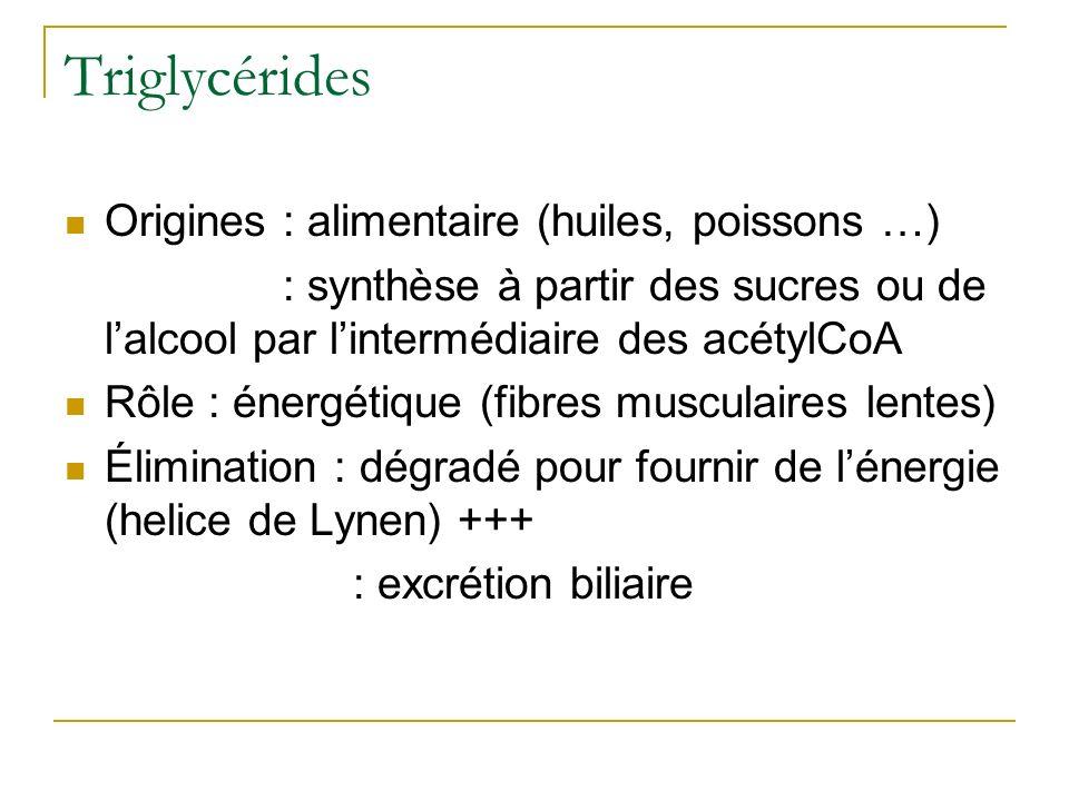 Triglycérides Origines : alimentaire (huiles, poissons …) Origines : synthèse à partir des sucres ou de lalcool par lintermédiaire des acétylCoA Rôle
