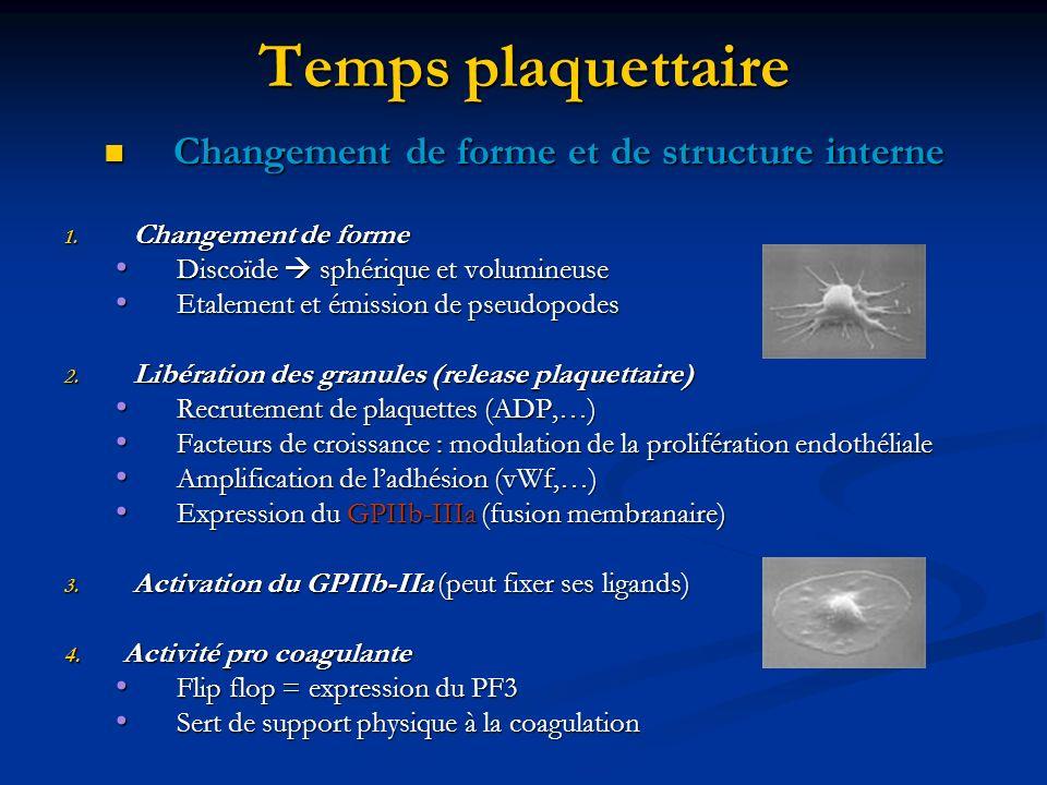 Temps plaquettaire Changement de forme et de structure interne Changement de forme et de structure interne 1. Changement de forme Discoïde sphérique e