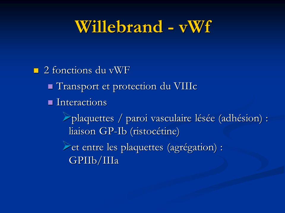 Willebrand - vWf 2 fonctions du vWF 2 fonctions du vWF Transport et protection du VIIIc Transport et protection du VIIIc Interactions Interactions pla
