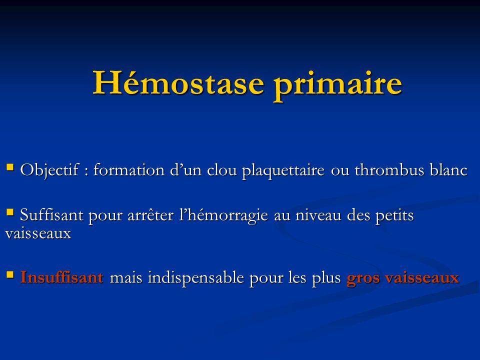 Hémostase primaire Intervenants : Intervenants : Plaquettes Plaquettes Paroi vasculaire (endothélium, sous endothélium) Paroi vasculaire (endothélium, sous endothélium) Fibrinogène Fibrinogène vWf vWf Conditions hémodynamiques (forces de cisaillement, fonction du calibre des Vx, vitesse découlement) Conditions hémodynamiques (forces de cisaillement, fonction du calibre des Vx, vitesse découlement)