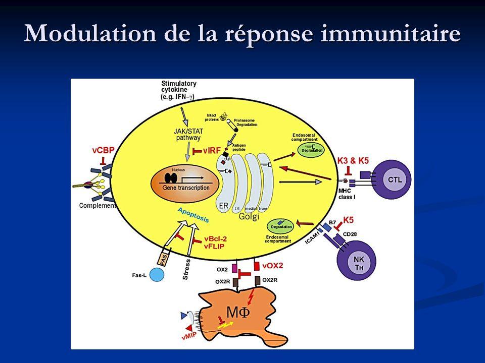 Modulation de la réponse immunitaire