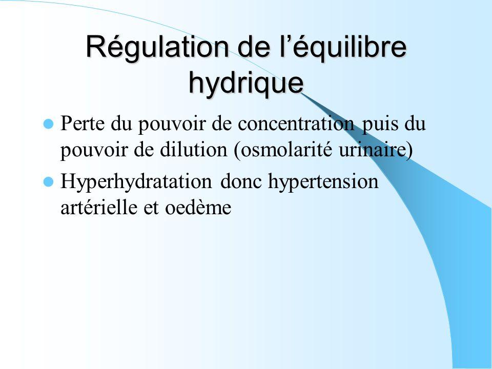 Régulation de léquilibre hydrique Perte du pouvoir de concentration puis du pouvoir de dilution (osmolarité urinaire) Hyperhydratation donc hypertensi