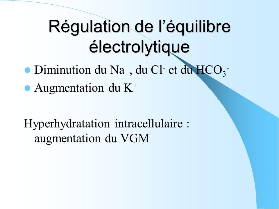 Régulation de léquilibre électrolytique Diminution du Na +, du Cl - et du HCO 3 - Augmentation du K + Hyperhydratation intracellulaire : augmentation