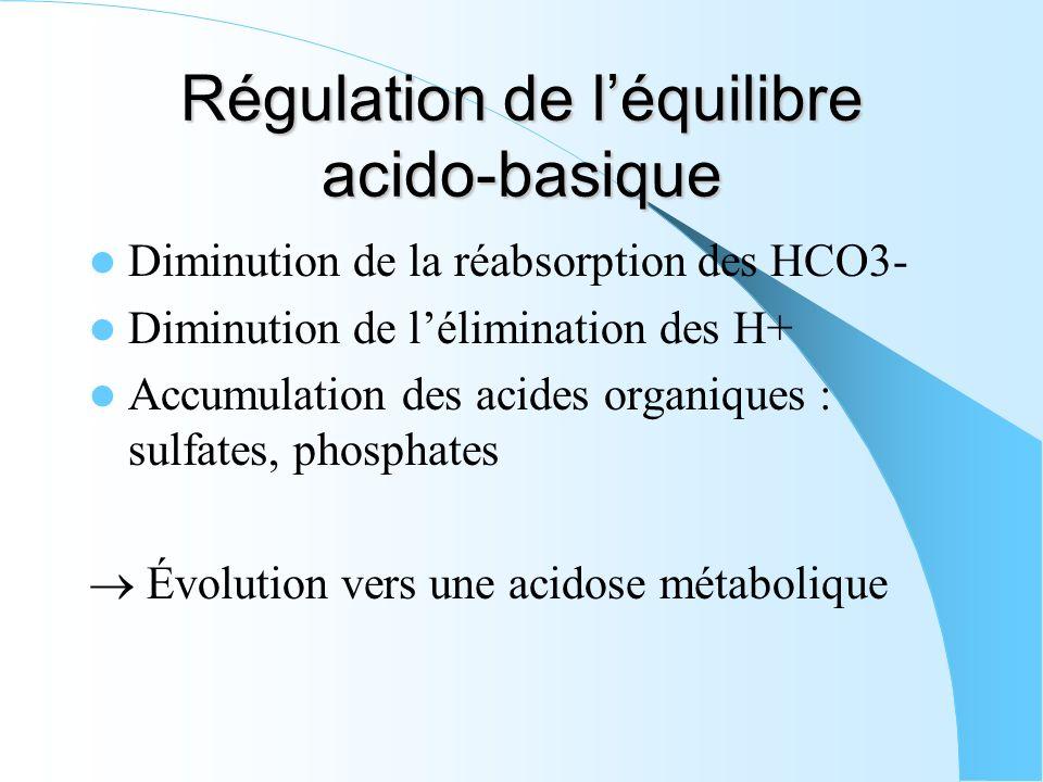 Régulation de léquilibre acido-basique Diminution de la réabsorption des HCO3- Diminution de lélimination des H+ Accumulation des acides organiques :